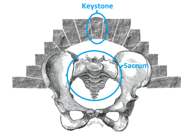 Your sacrum is the keystone of your lower body