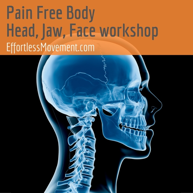 Pain Free Body Head Jaw Face workshop